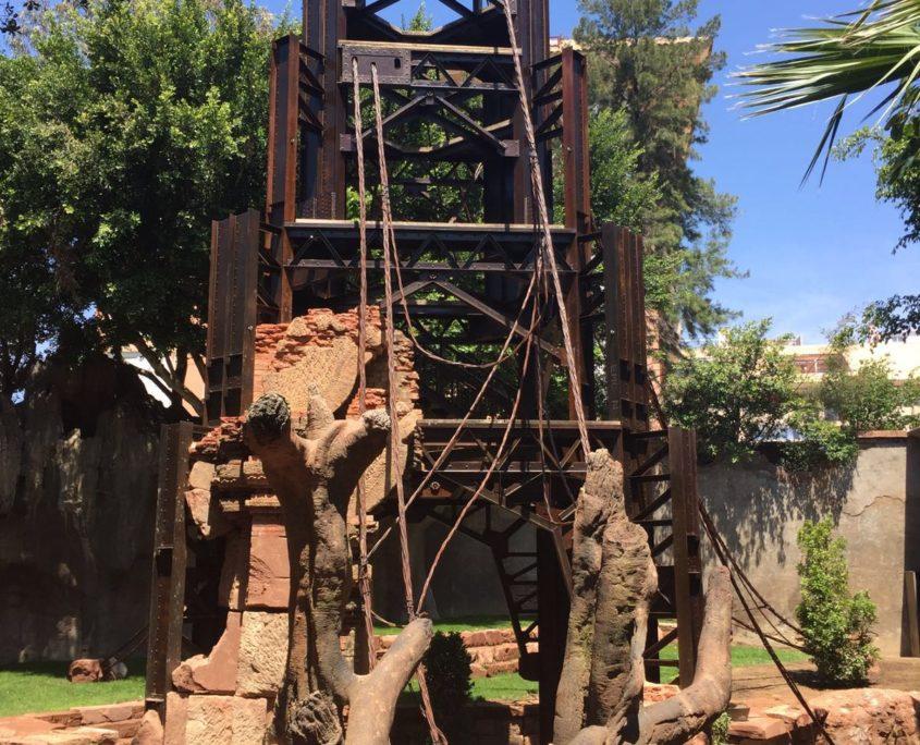 torre orangutanes